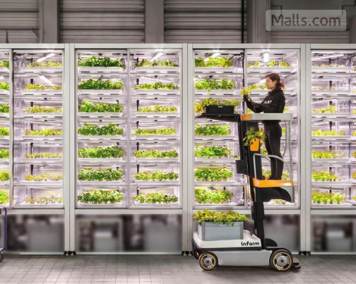 Marks & Spencer Creates Urban Farms Right in Stores