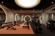 """Brutal"" Gym Created for Dubai Mall"