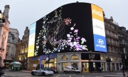 London's Piccadilly Lights Are Switched Back On